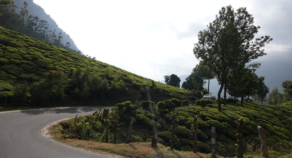 From Bangalore to Thekkady for a Perfect Weekend Holiday